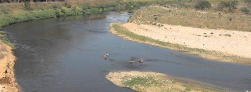 Rio das Velhas: retrato do nosso descaso