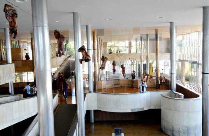 Bairro Palmital é tema de exposição em BH de seu ilustre morador, Paulo Nazareth
