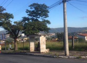Para combater a dengue, Prefeitura vai multar os donos de lotes abandonados