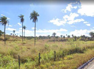 Projeto prevê 2.148 pessoas morando na área da antiga fazenda de Vicente Araújo