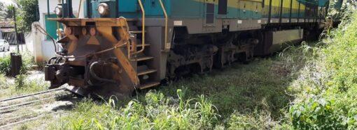 Moradores da Ponte pedem à Prefeitura limpeza do mato ao lado da linha de ferro