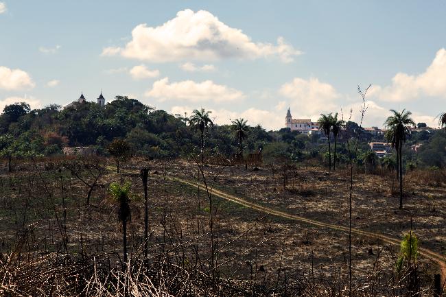 Vereadores defendem loteamento na antiga fazenda, mas desconhecem projeto