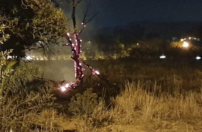 A quem interessa atear fogo na fazenda onde a cidade luta pra criar um parque?